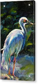 Acrylic Print featuring the painting I've Got My Eye On You by Chris Brandley