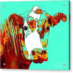 Turquoise Cow Acrylic Print