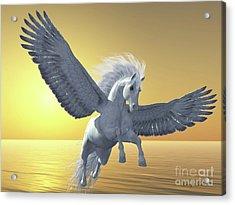 Ivory Pegasus Acrylic Print