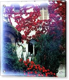Ivy Flames Ravello Italy Acrylic Print by Martin Sugg