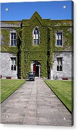 Ivy League Acrylic Print by Joe Burns