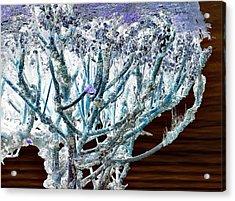 J-lintz - Mangrove Mushroom Acrylic Print