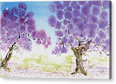 Jacaranda Trees Blooming In Buenos Aires, Argentina Acrylic Print