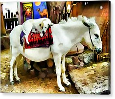 Acrylic Print featuring the photograph Jack And Jill by Kathy Tarochione
