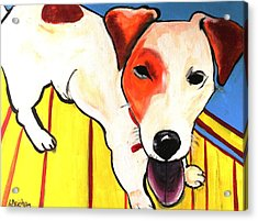 Acrylic Print featuring the painting Jack Russell Terrior- Peanut by Laura  Grisham