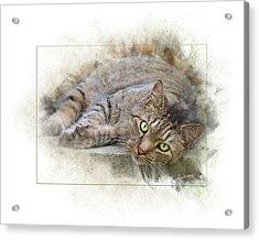 Acrylic Print featuring the digital art Jack by Sue Collura
