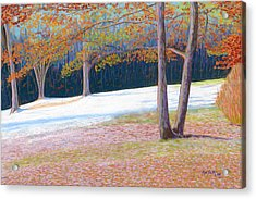 Jack Tree In Early Winter Acrylic Print by Rae  Smith PSC
