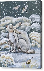 Jackrabbit And Horned Larks Acrylic Print by Dawn Senior-Trask