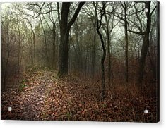 Jacomo Trail Acrylic Print by Michael Rosell