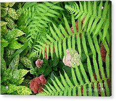 Jacqueline's Garden - Camaraderie Of Textures Acrylic Print by Lucyna A M Green