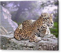 Jaguar And Mayan Temple Acrylic Print