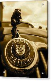 Acrylic Print featuring the photograph Jaguar Car Mascot by John Colley
