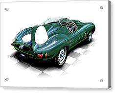 Jaguar D Type Acrylic Print by David Kyte