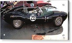 Jaguar D Type Hdr Acrylic Print by Curt Johnson