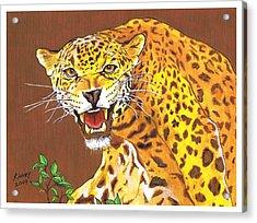 Jaguar Acrylic Print by Jay Kinney