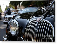 Jaguar Acrylic Print by Wingsdomain Art and Photography