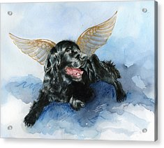 Jake Angel Acrylic Print by Galen Hazelhofer