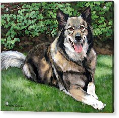 Acrylic Print featuring the painting Jake by Sandra Chase