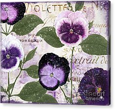January Purple Pansies Acrylic Print by Mindy Sommers