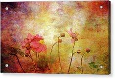 Japanese Anemone Landscape 3959 Idp_2 Acrylic Print