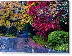 Japanese Autumn Acrylic Print by Kobby Dagan