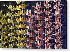 Japanese Cranes Acrylic Print