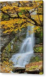 Japanese Falls Acrylic Print