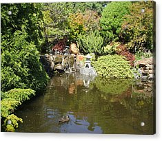 Japanese Garden At The Botanical Gardens In Hobart Tasmanis Acrylic Print by Bethwyn Mills
