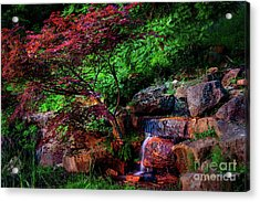 Japanese Maple At Honor Heights Park Acrylic Print
