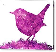 Japanese Robin Bird Acrylic Print