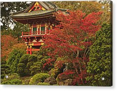 Japanese Tea Garden In Golden Gate Park Acrylic Print by Stuart Westmorland