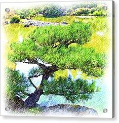 Japanese Tree Acrylic Print by Ralph Liebstein
