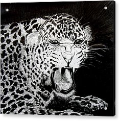 Jaquar II Acrylic Print