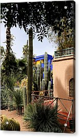 Acrylic Print featuring the photograph Jardin Majorelle 4 by Andrew Fare