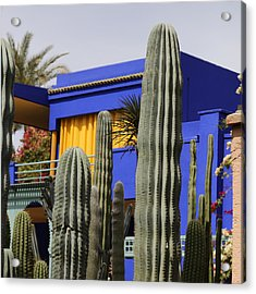 Acrylic Print featuring the photograph Jardin Majorelle 5 by Andrew Fare