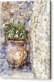 Jardiniere Acrylic Print by Shirley Stalter