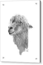 Jarrett Acrylic Print