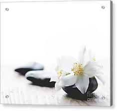 Jasmine Flower On Spa Stones Acrylic Print