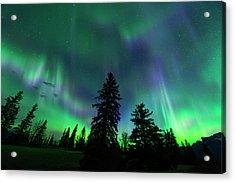 Jasper National Park Aurora Acrylic Print
