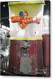 Jaw Teasers  Acrylic Print by Steven Digman
