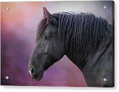 Acrylic Print featuring the photograph Jay by Debby Herold