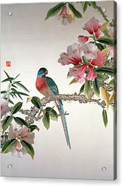 Jay On A Flowering Branch Acrylic Print by Chinese School