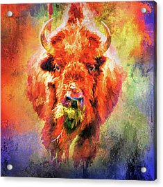 Jazzy Buffalo Colorful Animal Art By Jai Johnson Acrylic Print