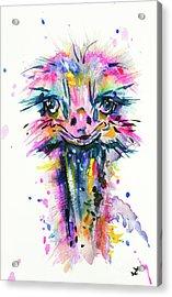 Acrylic Print featuring the painting Jazzzy Ostrich by Zaira Dzhaubaeva
