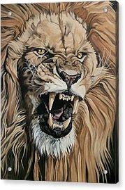 Jealous Roar Acrylic Print