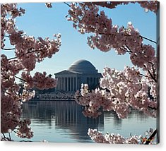Acrylic Print featuring the photograph Jefferson Memorial At Cherry Blossom Time On The Tidal Basin Ds008 by Gerry Gantt