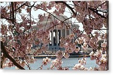Acrylic Print featuring the photograph Jefferson Through The Cherry Blossoms by Charles Kraus