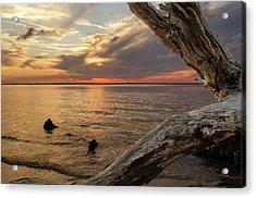 Jekyll Driftwood At Sunset Acrylic Print