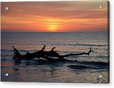Acrylic Print featuring the photograph Jekyll Island Sunrise 2016d by Bruce Gourley