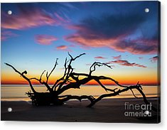 Jekyll Island Sunrise On Driftwood Beach Acrylic Print